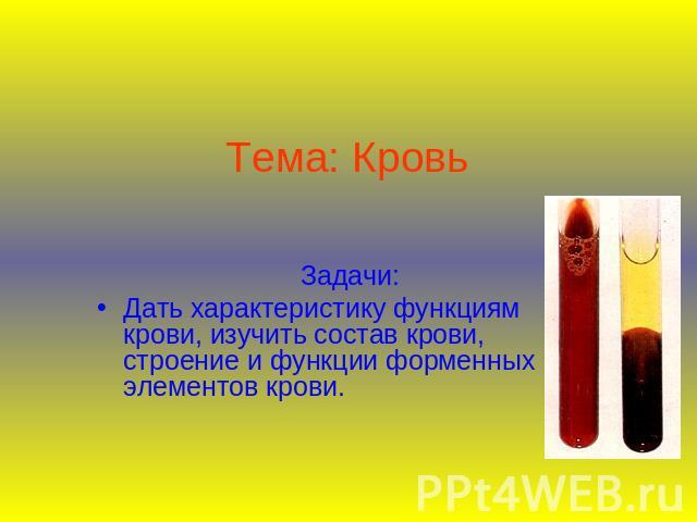 Отличительные особенности крови от лимфы