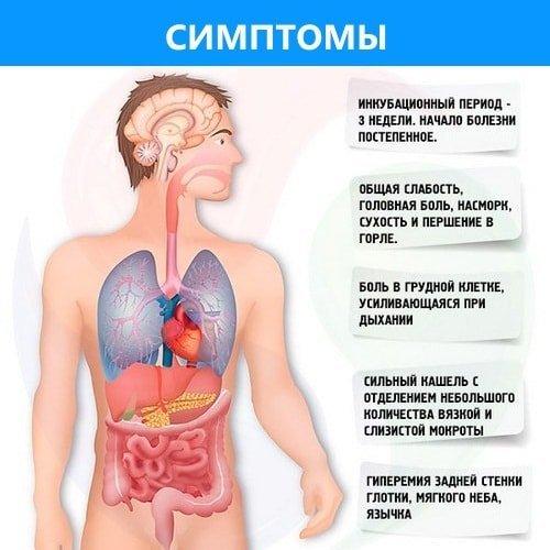 Чем опасна бронхопневмония у детей: причины и симптомы воспаления, лечение и профилактика болезни