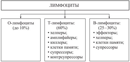 Атипичные лимфоциты