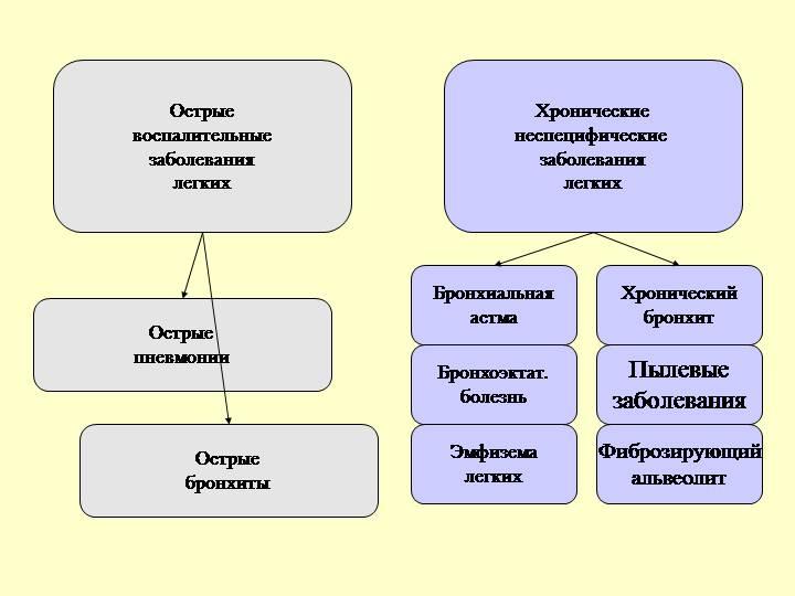 Симптомы и лечение заболеваний органов дыхания