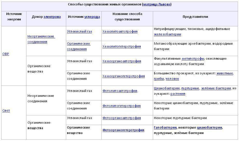 Бактерии, вызывающие развитие инфекционных заболеваний