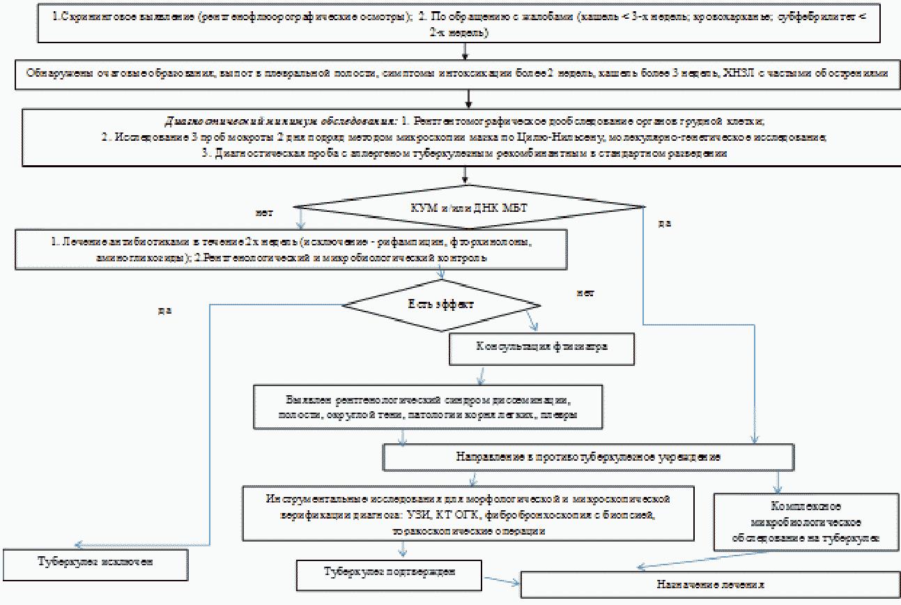 Виды туберкулеза | eurolab | инфекционные болезни