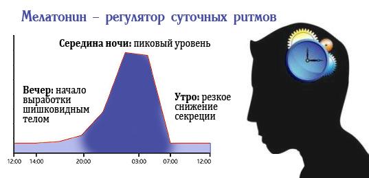 Мелаксенаналог естественного мелатонина человека