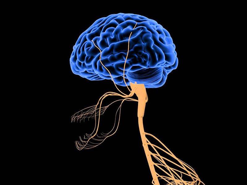 Какими бывают последствия инсульта для пожилых людей? опасность и прогнозы