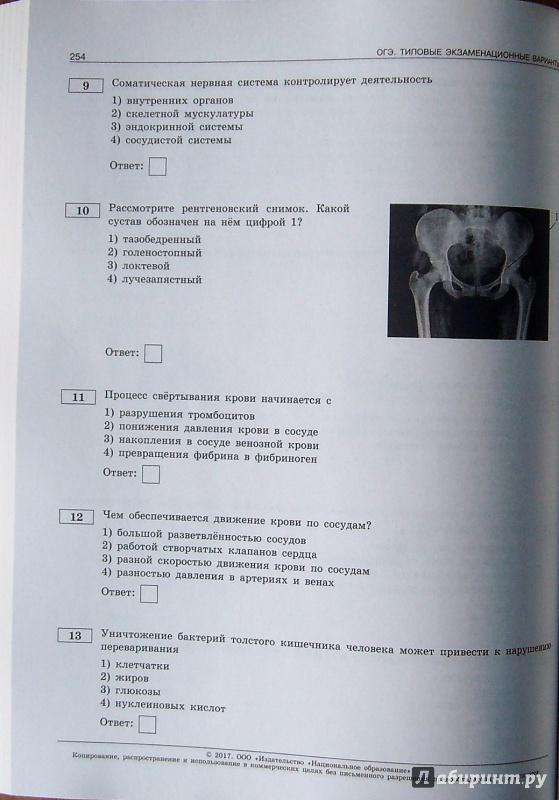 Железы внутренней секреции. что это такое, гормоны, таблица, функции, классификация, строение, заболевания