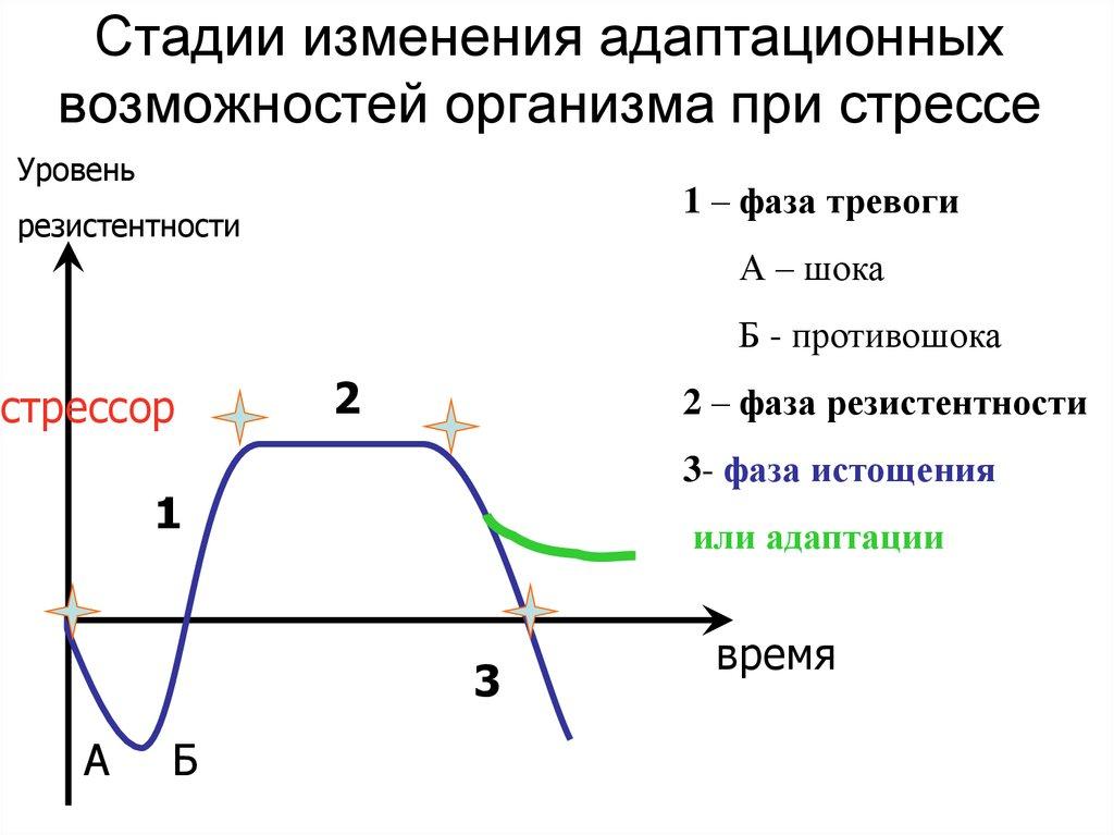 Гидрокортизон (кортизол) [lifebio.wiki]