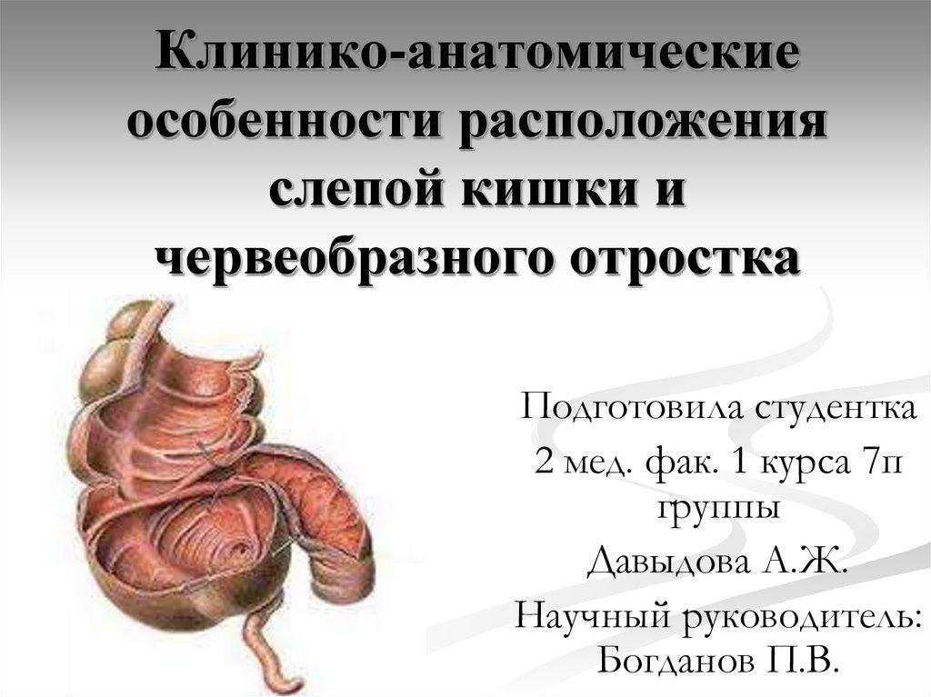 Тема: заболевания червеобразного отростка