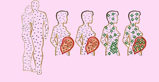 Какая группа крови самая востребованная в донорстве – классификация групп, и что такое резус-фактор