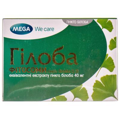 Гинкго билоба: полезные свойства и противопоказания | пища это лекарство
