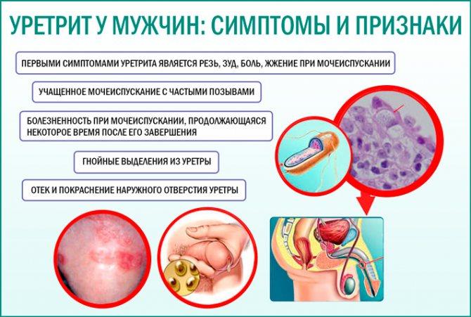 Ровамицин купить, цена на ровамицин 945 руб в москве, инструкция по применению, отзывы, аналоги