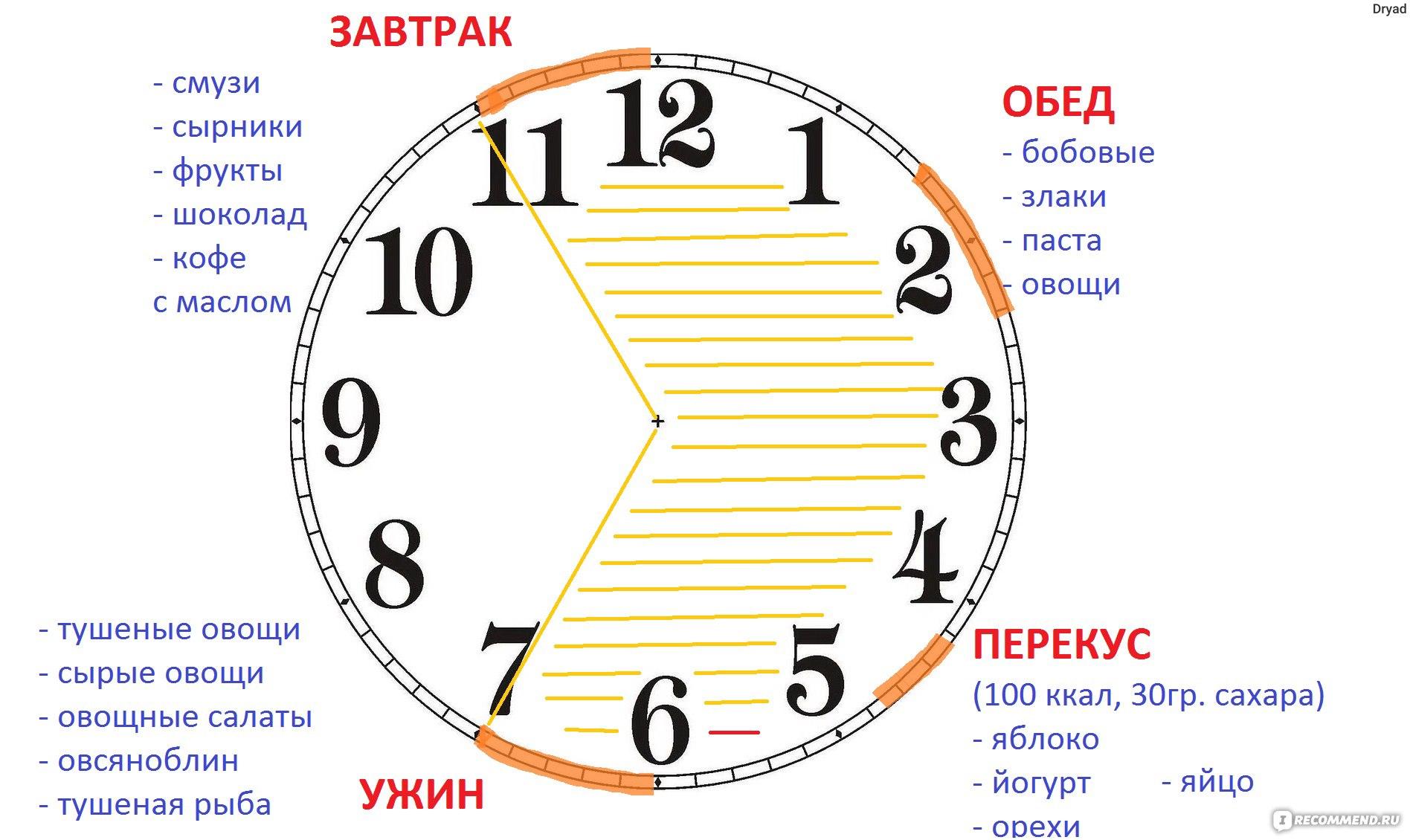 Диета Есть Через 16 Часов.