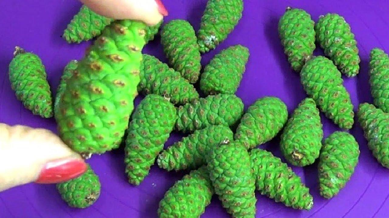 4 рецепта настоев из сосновых шишек для чистки сосудов, а также хвойный отвар от атеросклероза