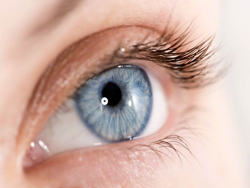 Катаракта лечение капли цена — все о проблемах с глазами