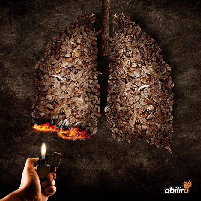 Можно ли курить при пневмонии и чем это чревато для здоровья и легких