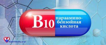 В каких продуктах содержится парааминобензойная кислота (витамин b10)