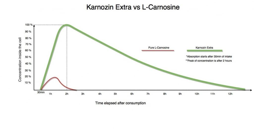 Карнозин эвалар: инструкция по применению, аналоги и отзывы