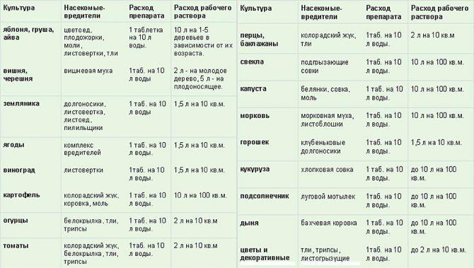 Инта-вир: недорогой популярный инсектицид широкого действия