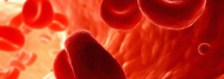 Продукты, сгущающие кровь: список самых эффективных   метки: арбуз, разжижение, кровь, гранатовый, сок