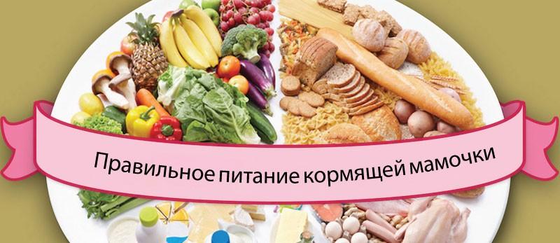 Правильное питание кормящей мамы - ежедневное меню и продукты: что можно и нельзя есть при лактации