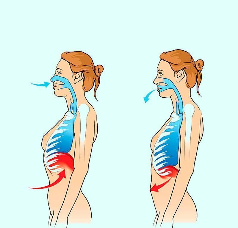Читать книгу дыхание по бутейко от всех болезней константина бутейко : онлайн чтение - страница 2