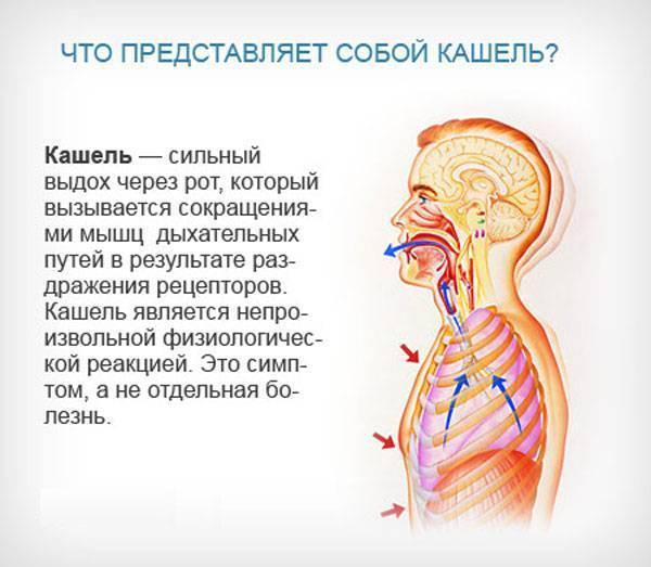 Кашель при сердечной недостаточности симптомы и лечение