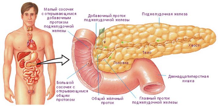 Боли в левом боку - причины и лечение