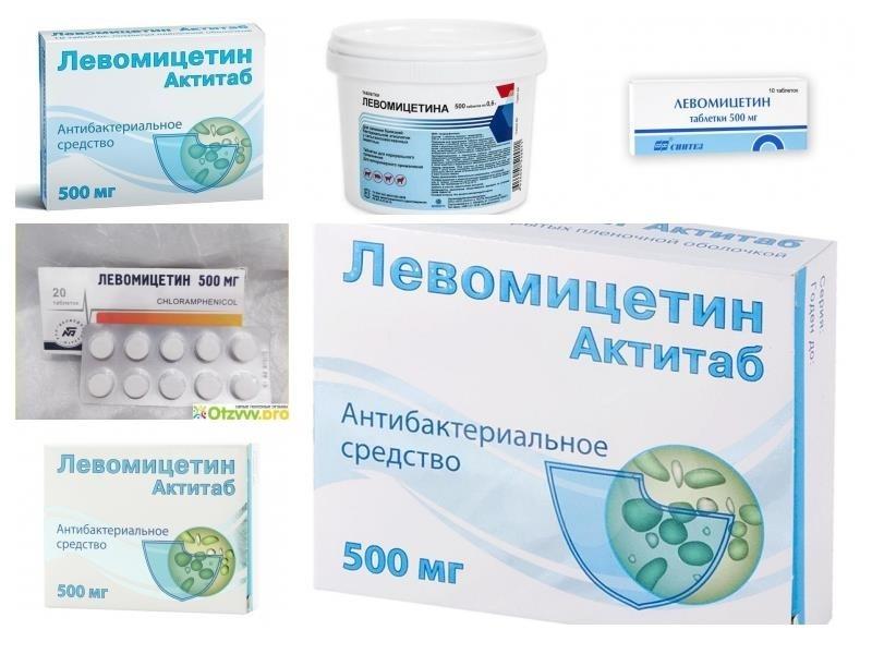 Таблетки от поноса левомицетин инструкция — боль в кишках