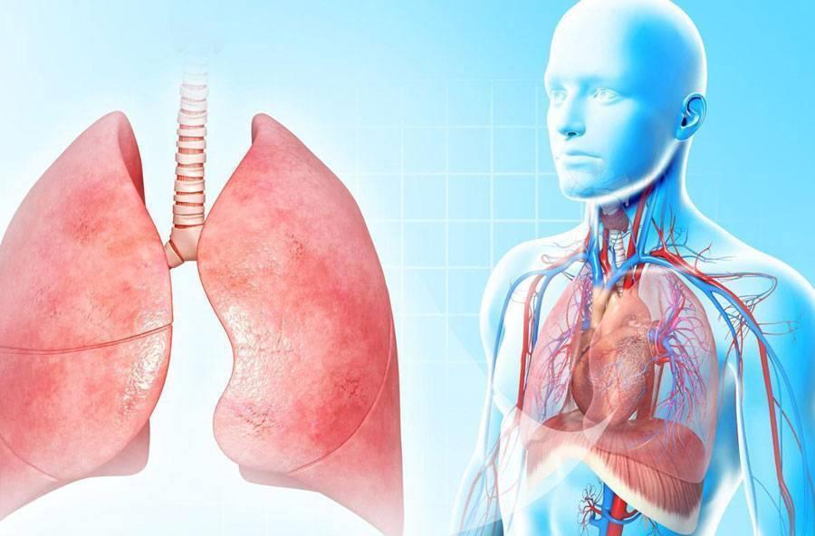 Признаки пневмонии у взрослого без температуры, симптомы (вирусная, атипичная пневмония) – как определить воспаление легких?я