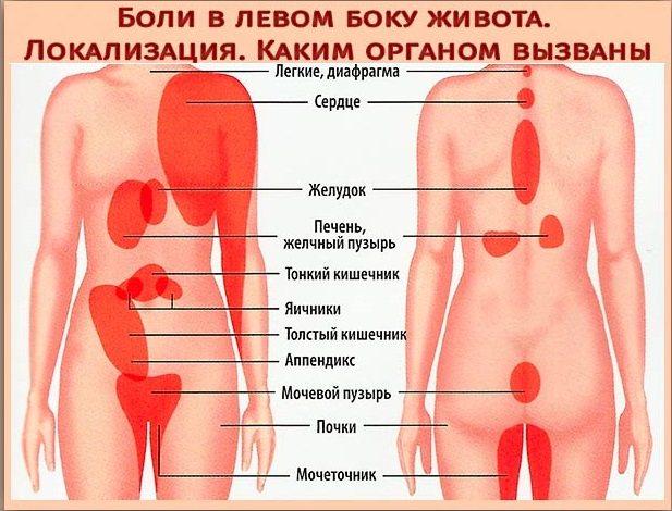 Причины боли в левом боку под ребрами