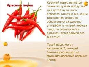 Красный острый перец - полезные свойства и применение. кайенский перец чили | книга здоровья