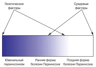Синдром паркинсонизма и болезнь паркинсона – чем отличаются?