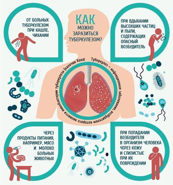 Лекарства для профилактики туберкулеза