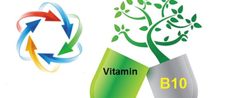 Витамин в10 парааминобензойная кислота пабк для чего нужен организму в каких продуктах содержится в таблетках значение недостаток избыток