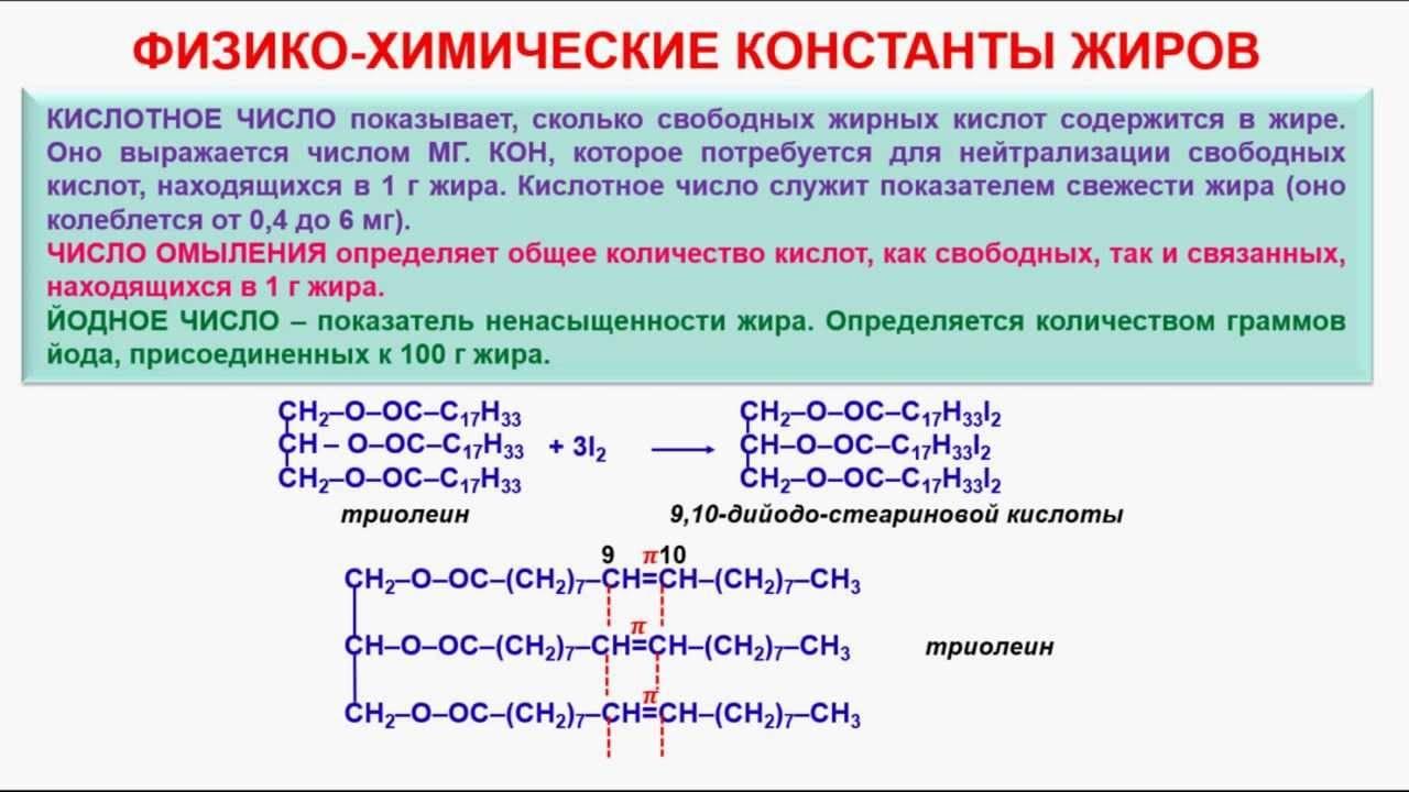 Жиры. строение, химические свойства, функции в организме