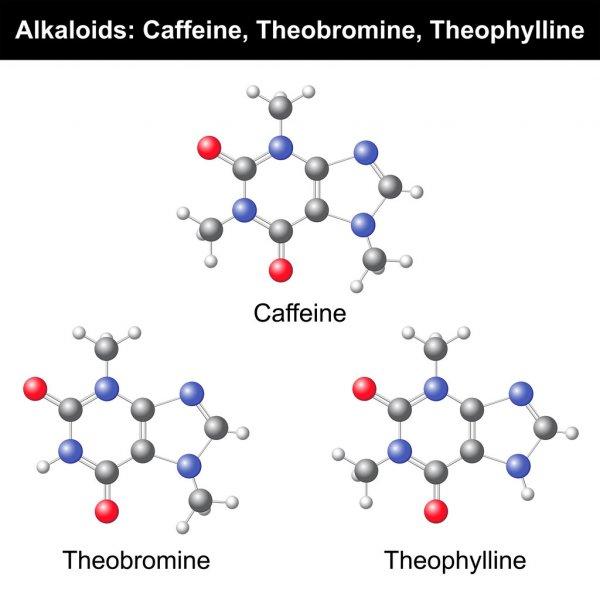 Современные аналоги эуфиллина