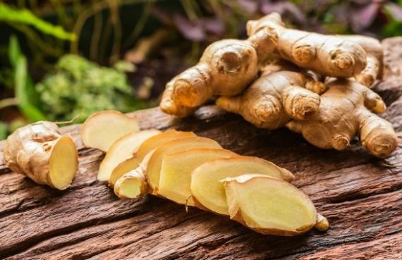 Лечебные свойства имбиря. как употреблять имбирь?