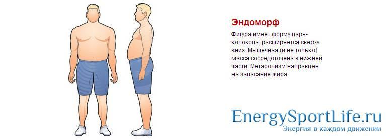 Диета Для Похудения Эндоморфа.