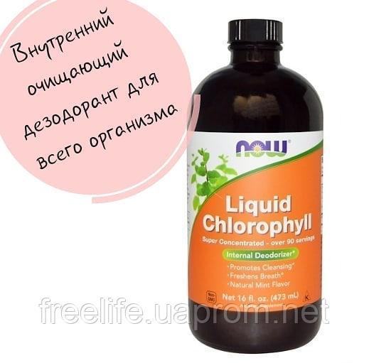 Жидкий хлорофилл. польза и вред, инструкция по применению, цена, отзывы