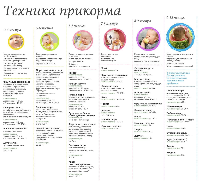 Правила введения прикорма детям первого года жизни