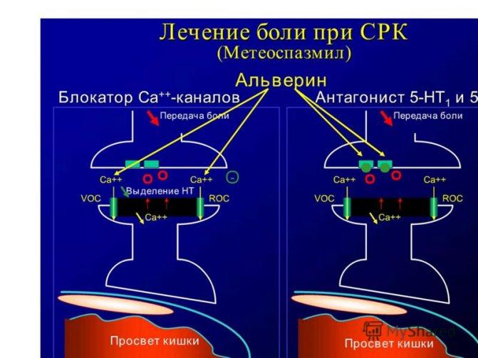 Метеоспазмил: инструкция по применению, аналоги и отзывы, цены в аптеках россии