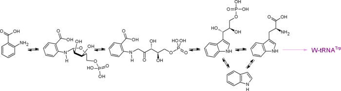 Триптофан - что это такое и в каких продуктах содержится, свойства аминокислоты и показания таблеток