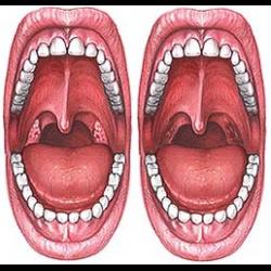 Сколько болит горло после тонзиллэктомии
