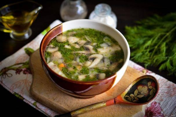 Супы для диабетиков 2 типа: рецепты, советы по выбору блюд и ингредиентов