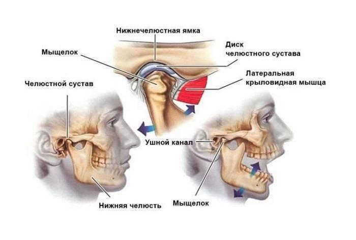 Суставной синдром: причины развития, признаки, виды, диагноз, как лечить