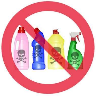 Чистая правда о безопасной бытовой химии