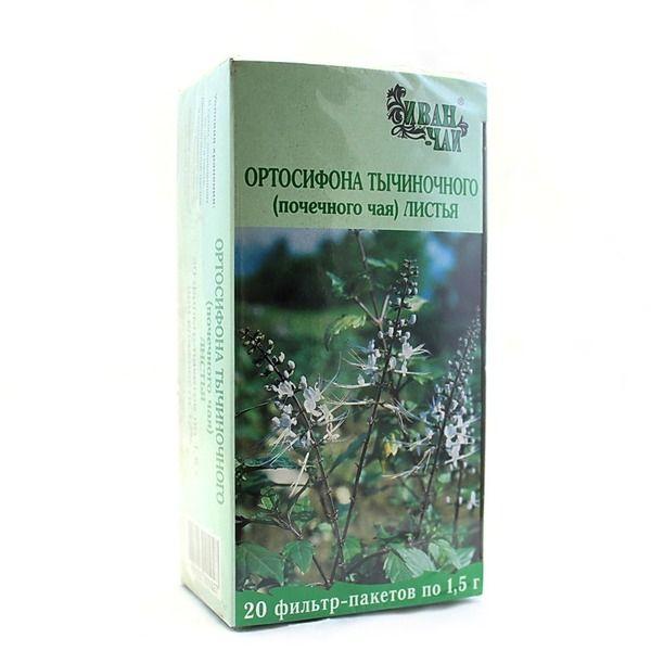 Инструкция по применению почечного чая ортосифон