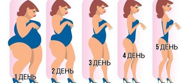Вверх к стройности вместе с диетой «лесенка»!