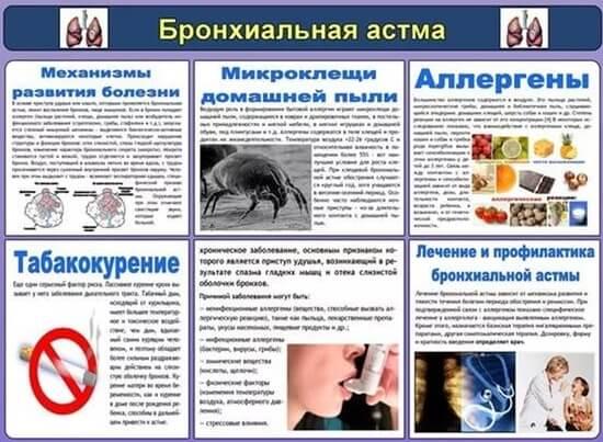 Профилактика бронхиальной астмы у взрослых и детей: памятка