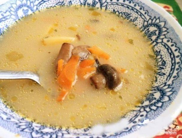 Диетические рецепты блюд с грибами для правильного рациона белкового питания для похудения