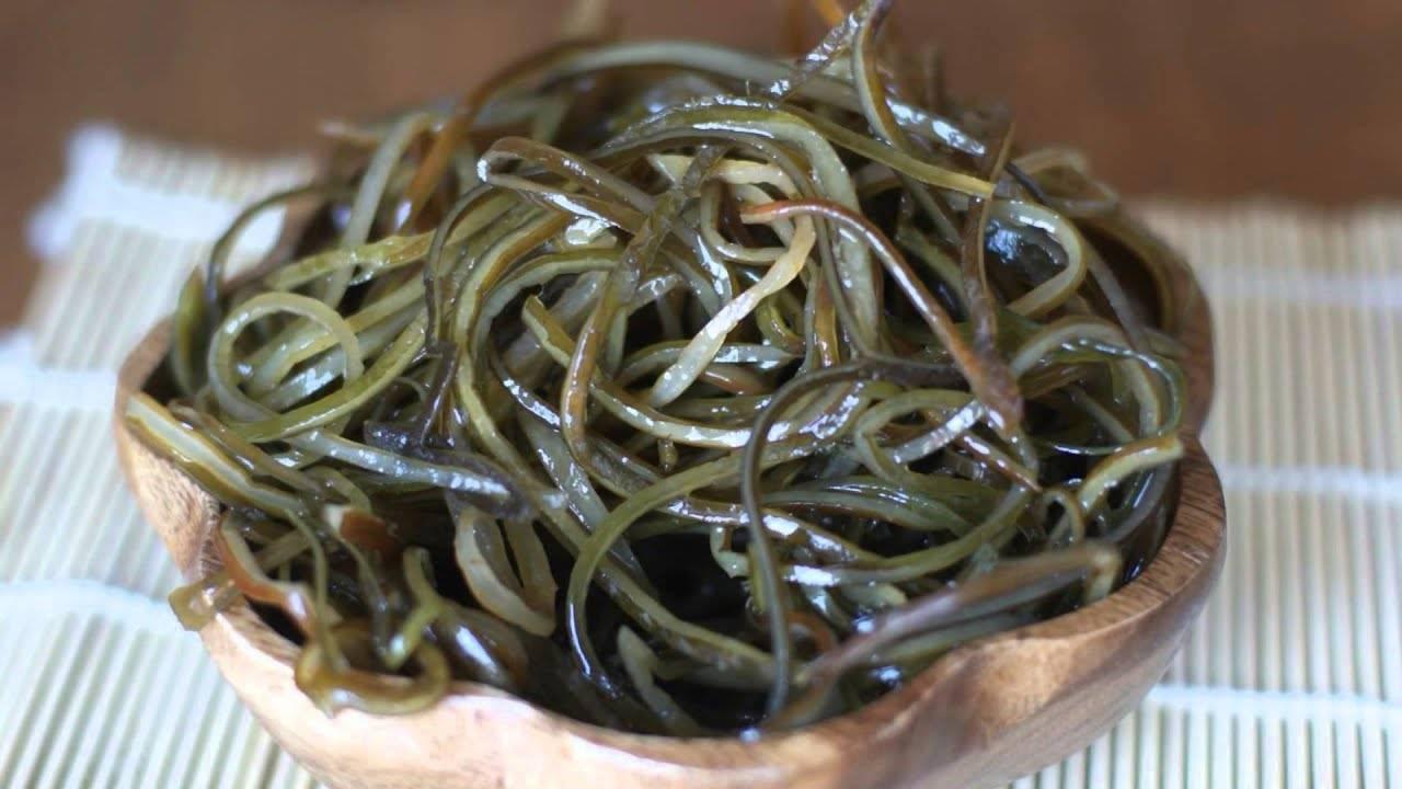 Морская капуста. полезные свойства и возможный вред. лечебные свойства для организма